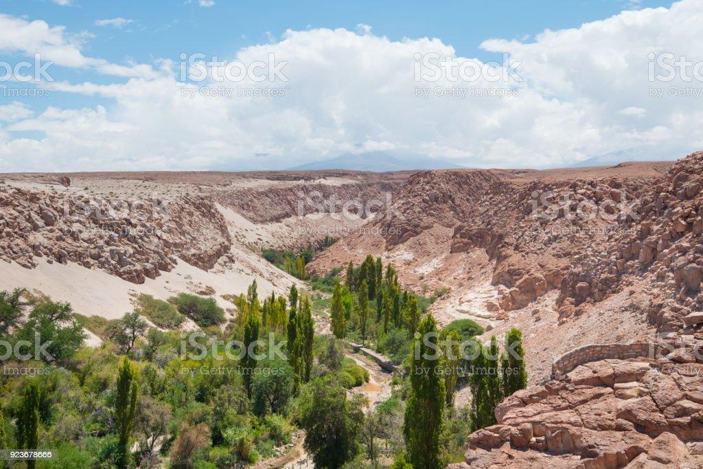 Valle de Jere in Atacama desert near Toconao stock photo
