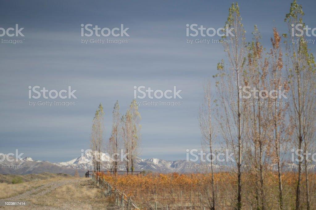 Valle de Uco - foto de stock