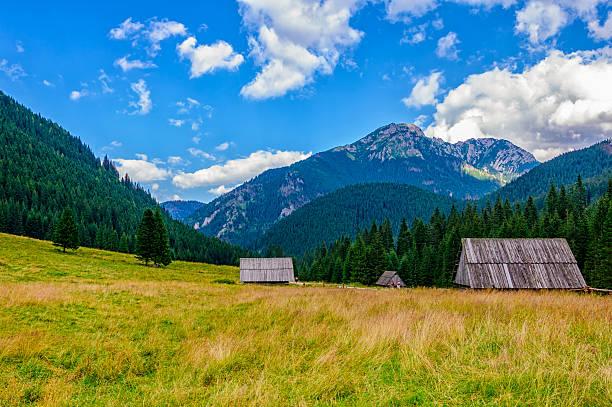 Valley 2 - Tatra Mountains stock photo