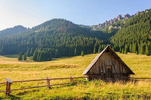 Valley 3 - Tatra Mountains stock photo
