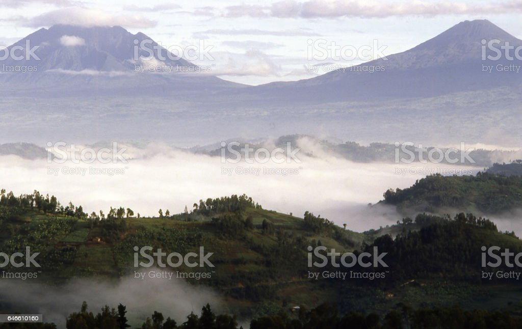 Valley fogs and volcanoes National Park Rwanda Africa stock photo