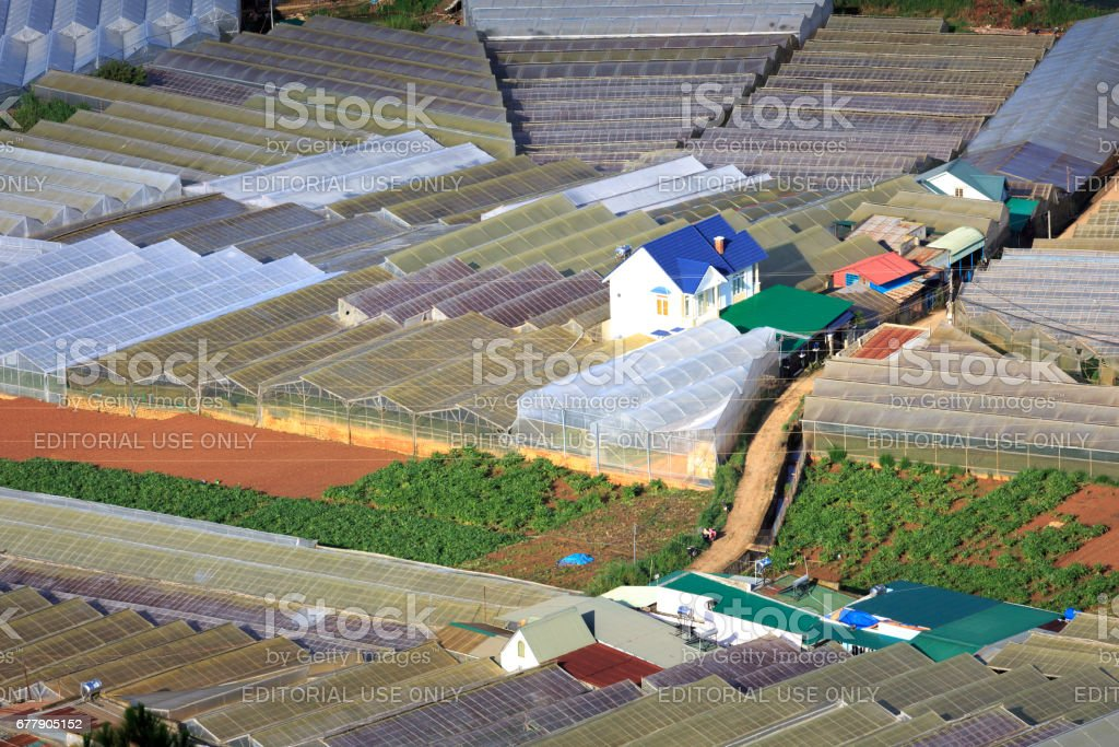 valley in Dalat with the greenhouse to plant flowers and vegetables stock photo