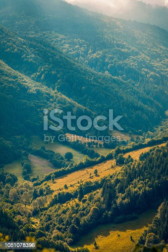 A valley in the mountains with forests shot in the morning after sunrise with sun rays falling through fog