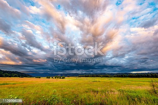 Autumn landscape of a meadow and hills covered with grass and green forest trees, covered with blue haze and fabulous fancy clouds on blue sky in the Columbia River Gorge National Reserve area