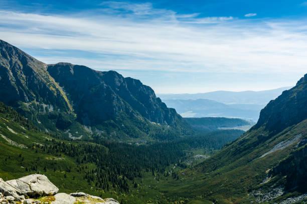 Vadi Mieguszowiecka (Mengusovska dolina) - şimdi büyümüş orman ve cüce dağ çam tarafından tipik bir U şekilli vadi. stok fotoğrafı