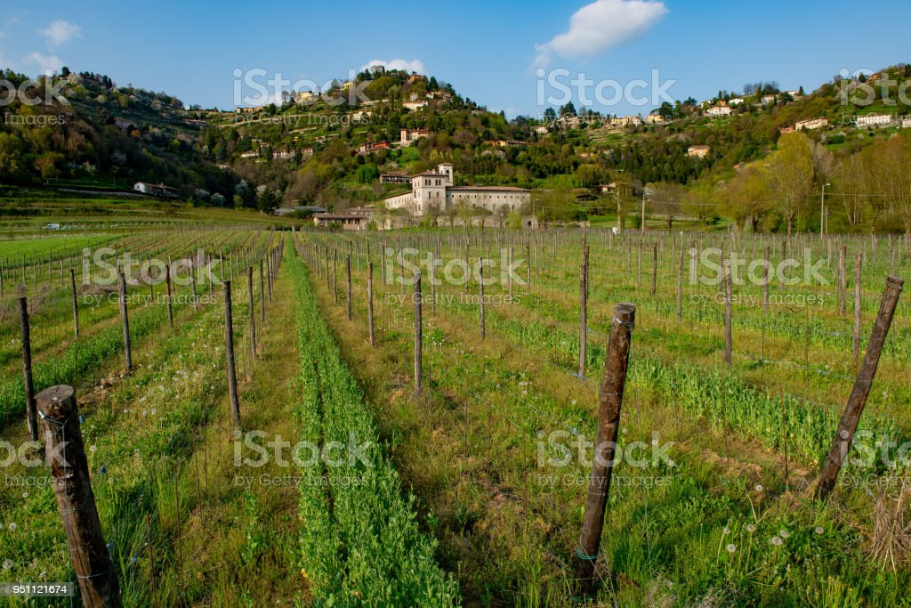 valley of abstinence stock photo