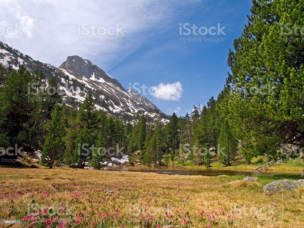 Valley of Benasque royalty-free stock photo
