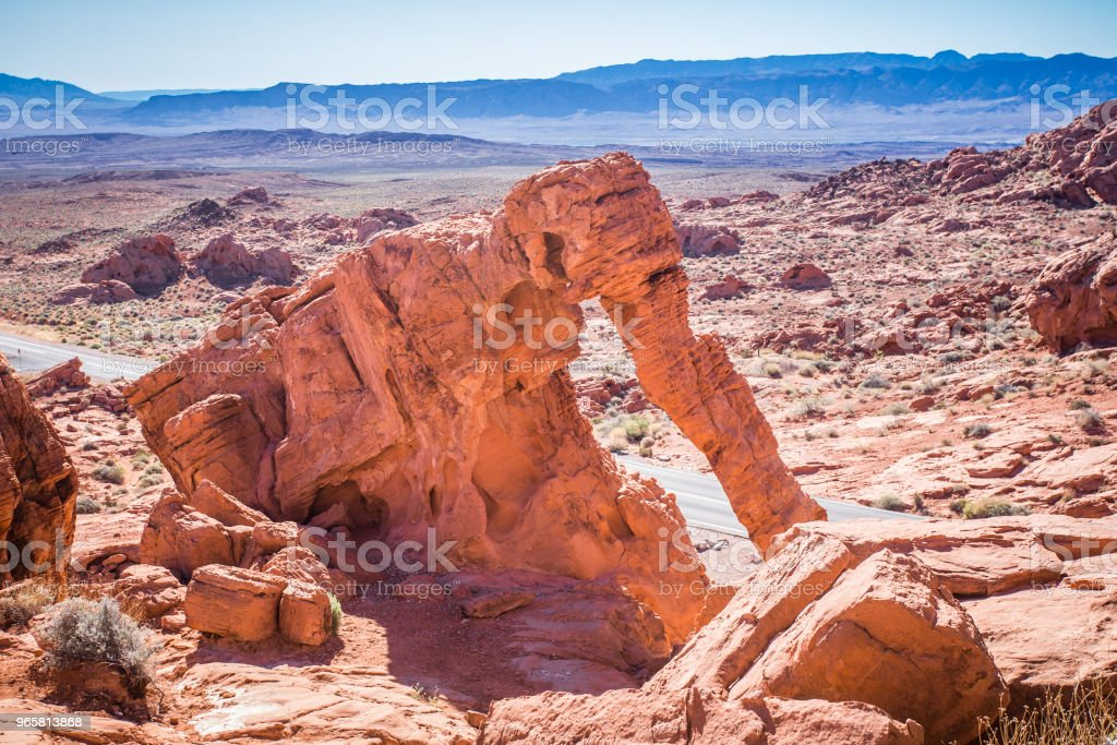 Valley of Fire Nevada - Royalty-free Animal selvagem Foto de stock