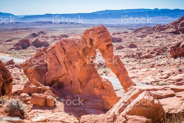 Valley Of Fire Nevada - Fotografias de stock e mais imagens de Animal selvagem