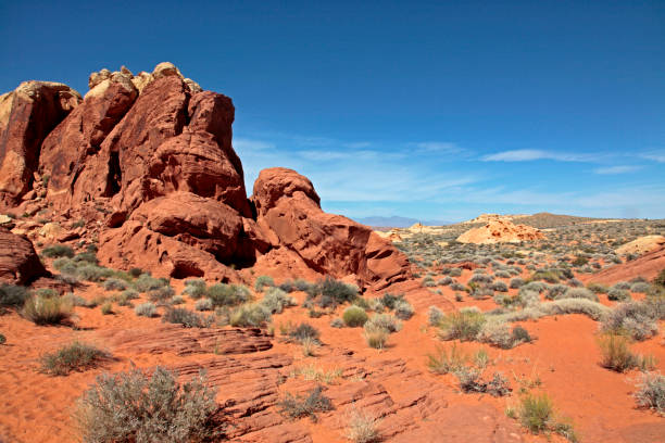 Valley of Fire State Park, Nevada, USA – Foto