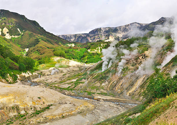 Valley of geysers Valley of geysers on Kamchatka kamchatka peninsula stock pictures, royalty-free photos & images