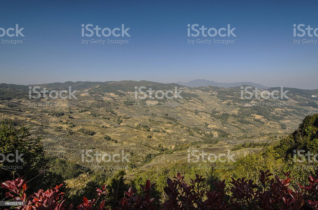 Valley of the ladder royalty-free stock photo