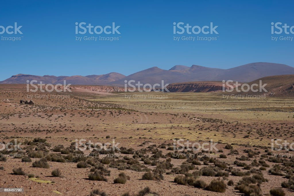 Valley on the Altiplano stock photo
