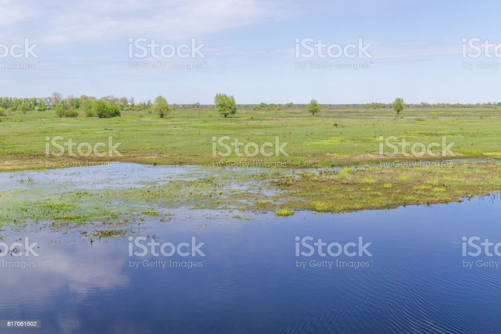 Valley river in reserve stock photo