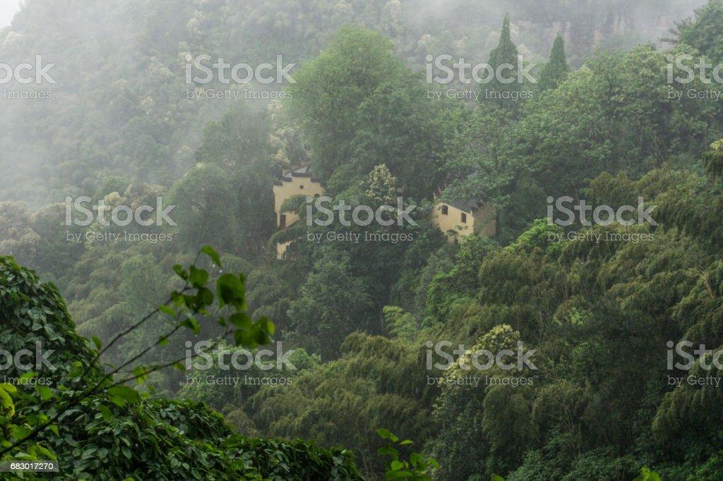 Valley Stream royalty-free stock photo