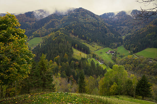 Valley view Black Forest (Simonswälder Tal) in autumn, Germany stock photo