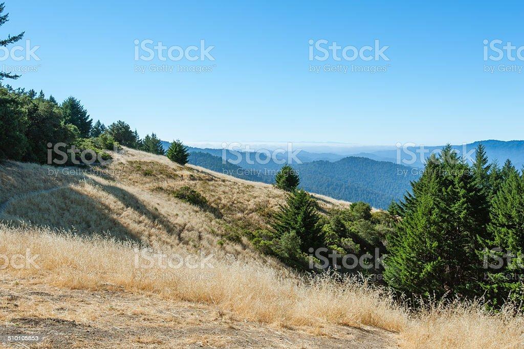 Valley view on mountain stock photo