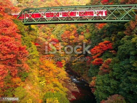 istock Valleys and mountain railway of autumn colors 177093545