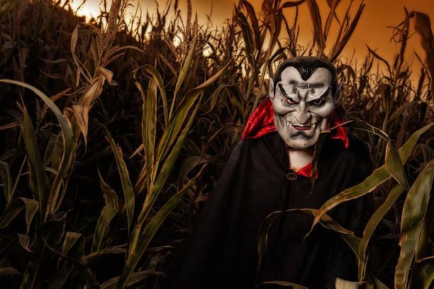 vampir in einem feld - plants of zombies stock-fotos und bilder
