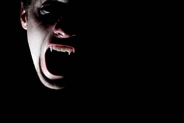 Vampir – Foto