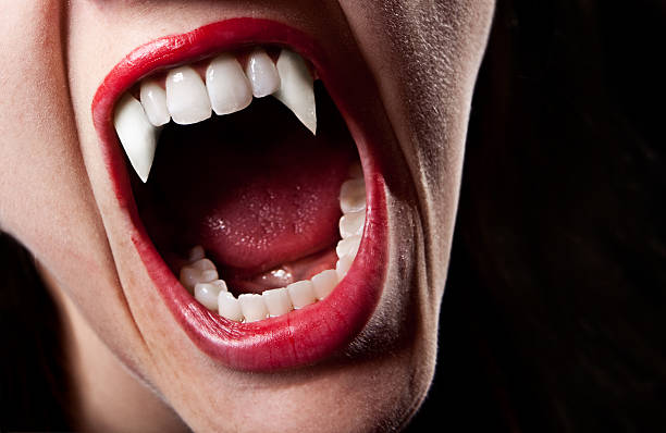 Vampire's Teeth A close up of a vampire's teeth. fang stock pictures, royalty-free photos & images