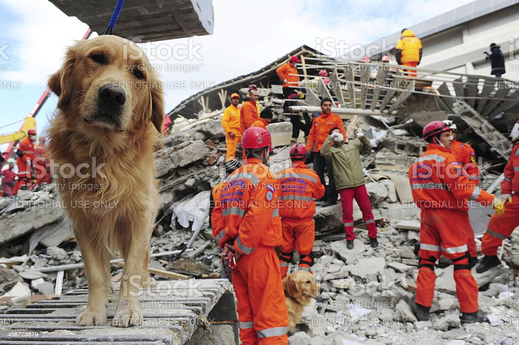 Van earthquake stock photo