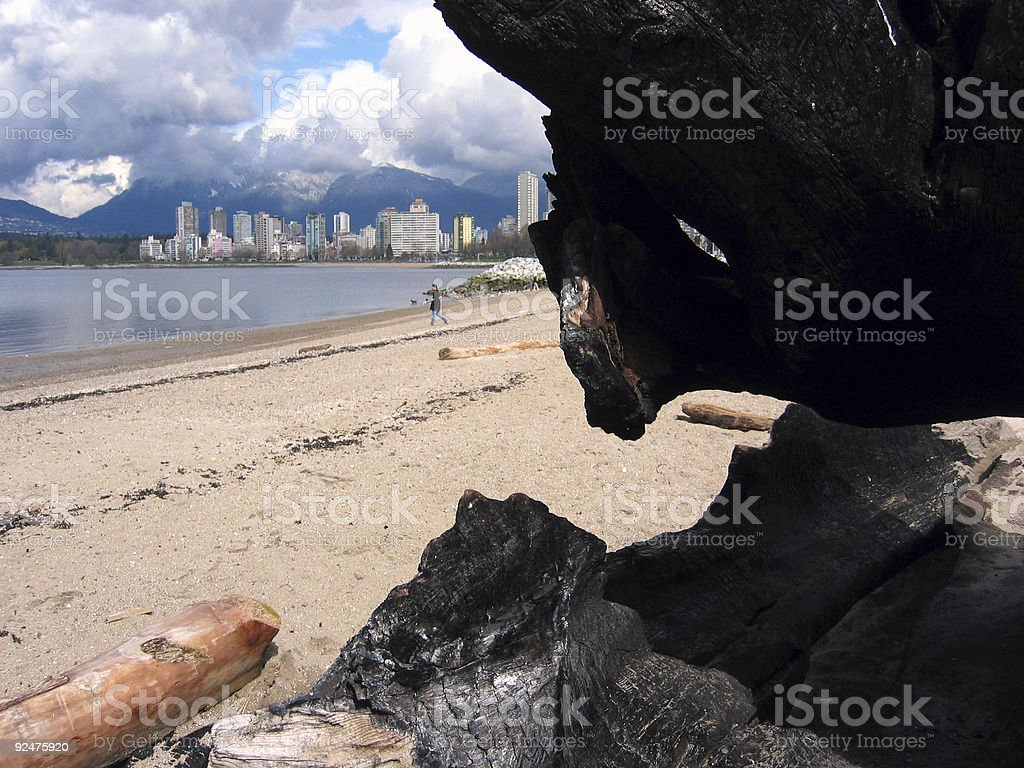 Vancouver behind stump royalty-free stock photo