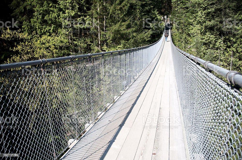 Vancouver Capilano Suspension Bridge stock photo