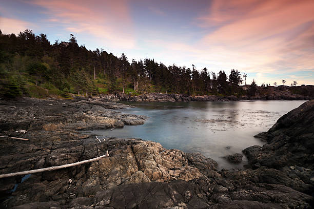 Vancouver Island Seascape West coast of Vancouver Island at dusk. vancouver island stock pictures, royalty-free photos & images