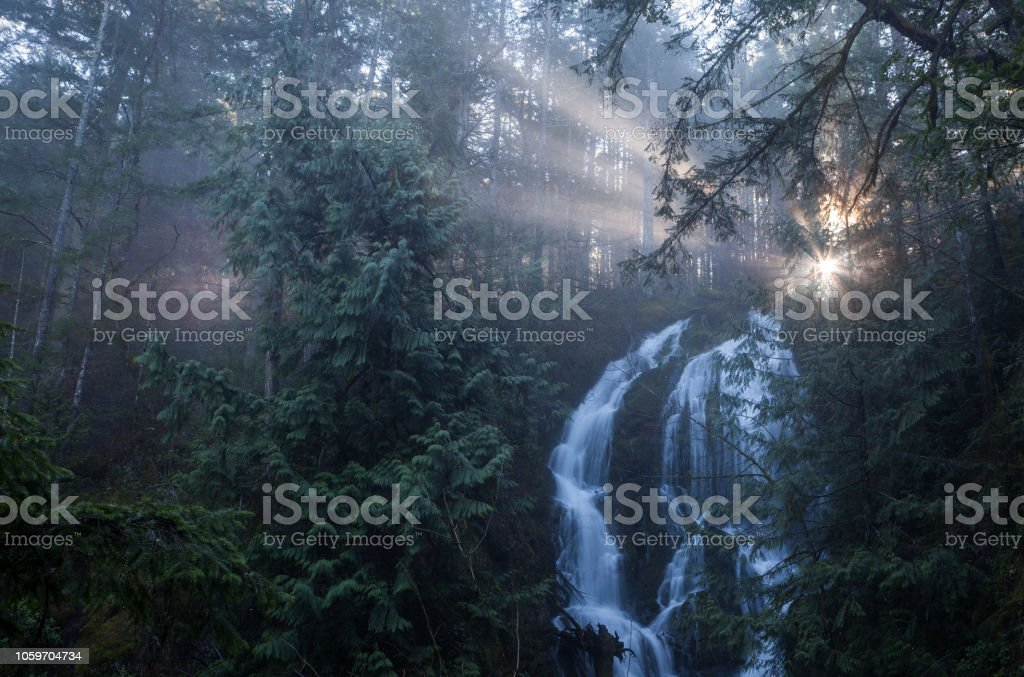 Vancouver Island waterfall in forest stock photo