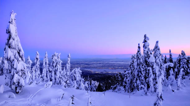 Vancouver skyline in winter from Cypress Mountain ski run. stock photo