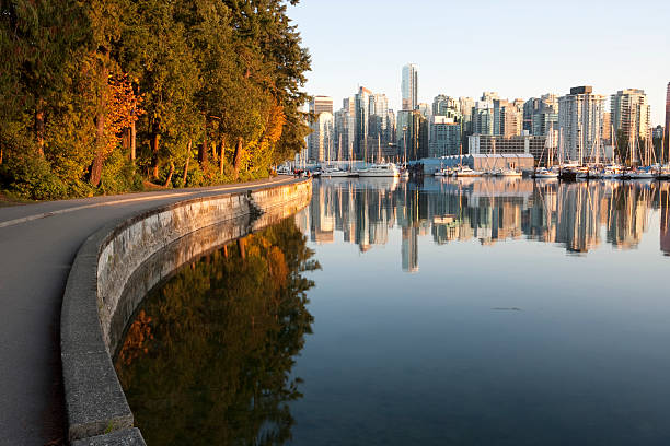 Vancouver  Stanley Park  british columbia stock pictures, royalty-free photos & images