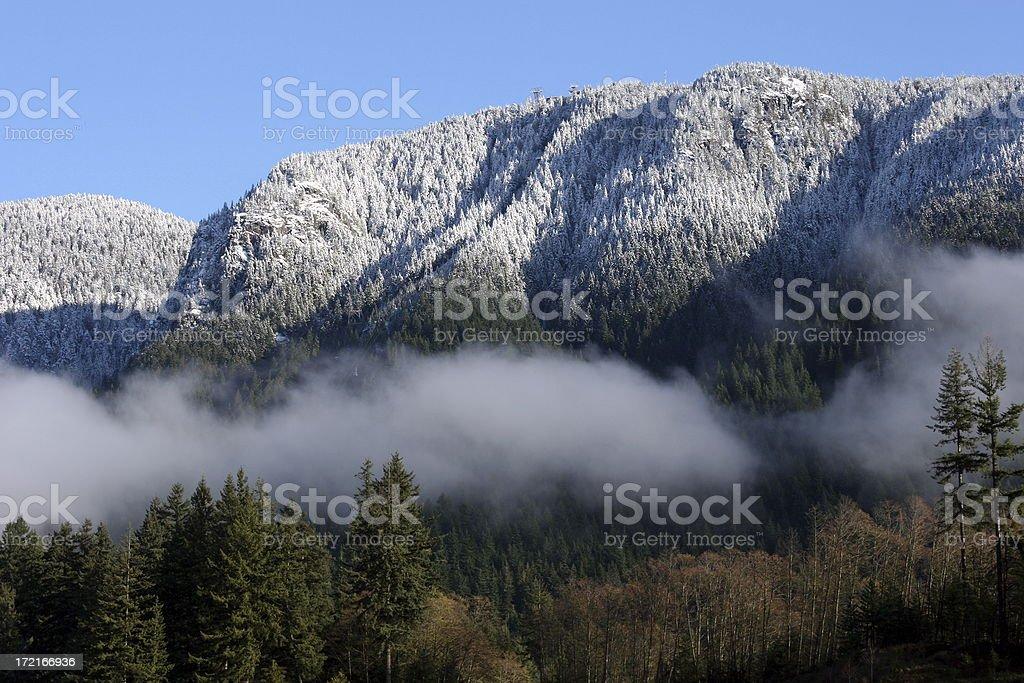 Vancouver_grouse Mountain – Foto