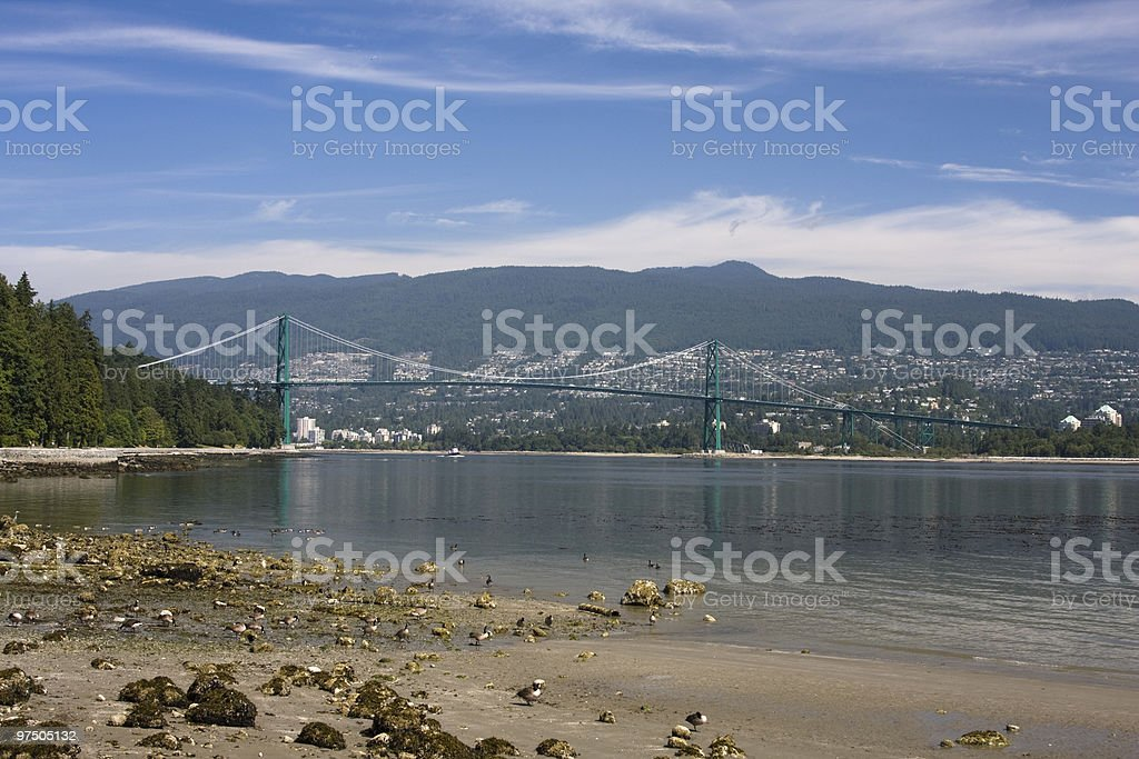 Vancouver's Lions Gate Bridge royalty-free stock photo
