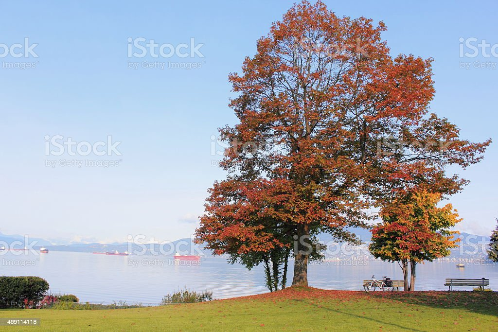 Vancouver`s Point Grey District stock photo