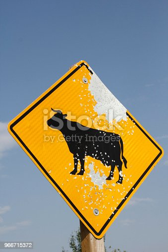Cattle road sign vandalized by gunshot