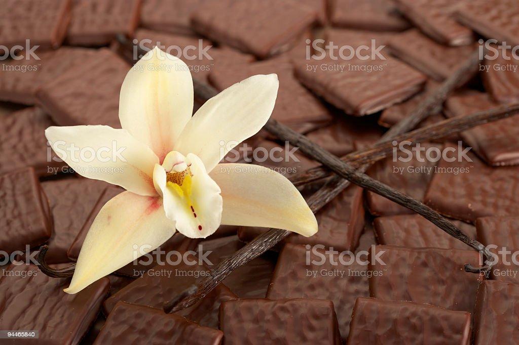 vanilla and chocolate royalty-free stock photo