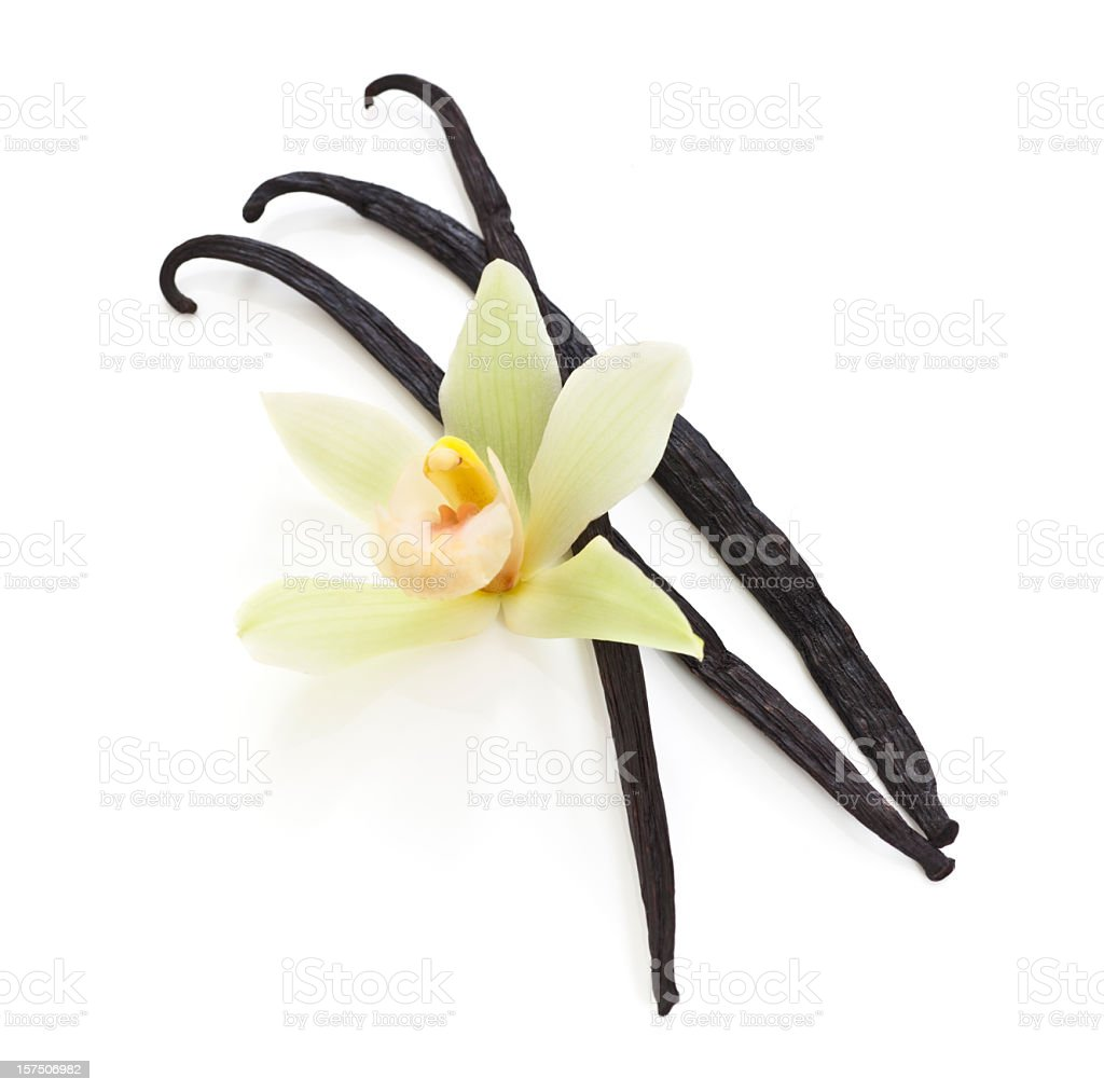 Fava de baunilha e orquídea - foto de acervo