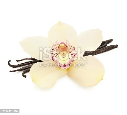 istock Vanilla Beans and Orchid 529952157