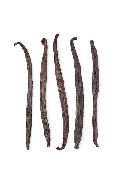 Vanilla beans Vanilla beans, Vanilla planifolia on white background plant pod stock pictures, royalty-free photos & images