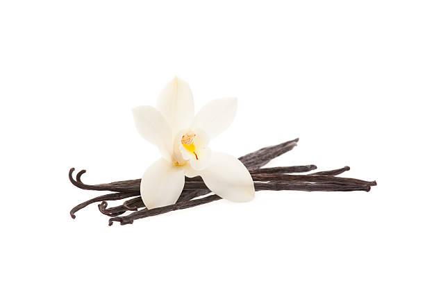 gousses de vanille avec orchidée - vanille photos et images de collection