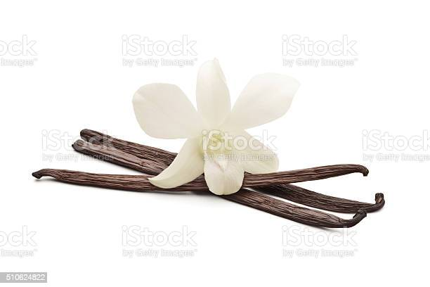 Vanilla beans with orchid picture id510624822?b=1&k=6&m=510624822&s=612x612&h=sbh8qydpgcil1r lg5jqzbg9h3lvf3zk1q942ybldru=