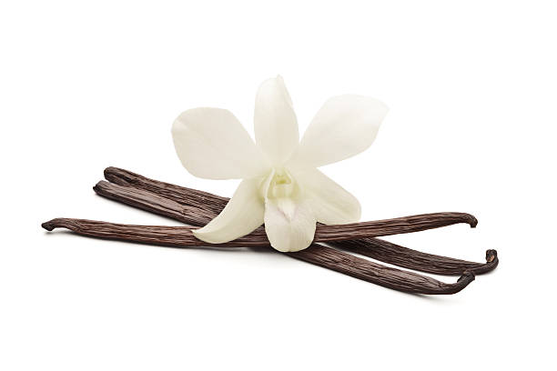 Vanilla beans with orchid Vanilla beans with orchid isolated on white background plant pod stock pictures, royalty-free photos & images