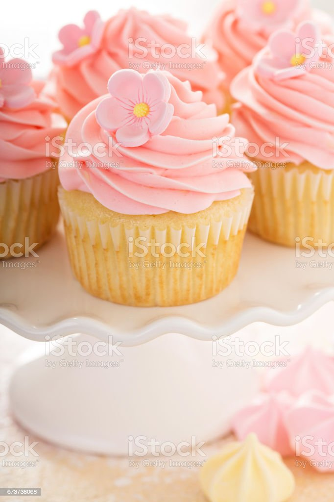 Vanilla cupcakes with pink raspberry frosting photo libre de droits