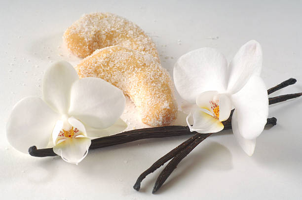 Vanilla Vanilla on white background vanilla orchid stock pictures, royalty-free photos & images