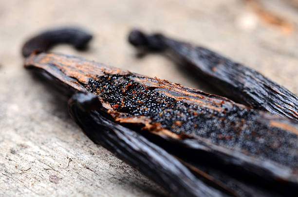 vanilla pods vanilla pods plant pod stock pictures, royalty-free photos & images