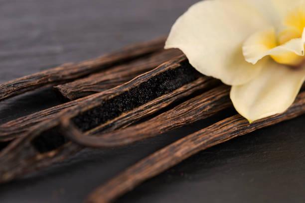 gousses de vanille - vanille photos et images de collection