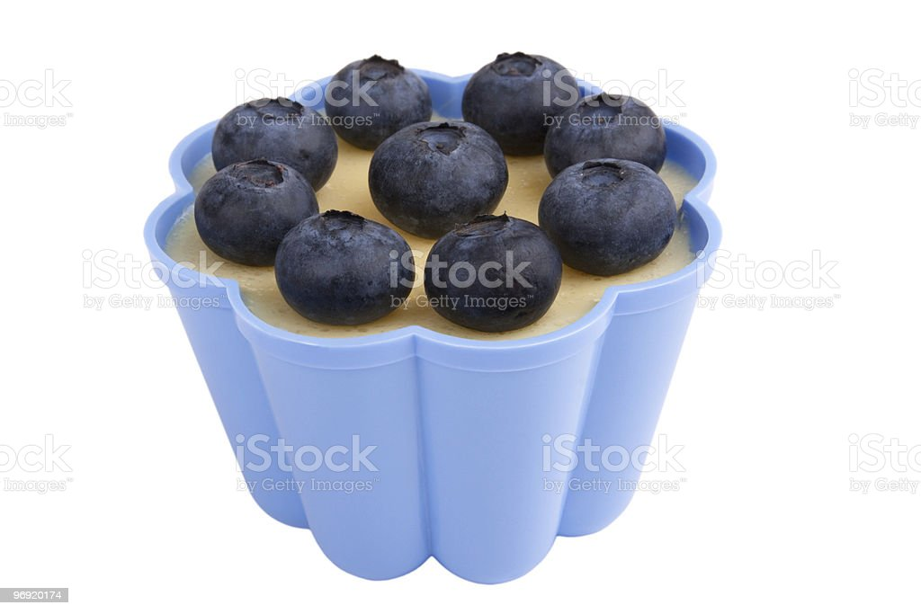 Vanilla pudding with blueberry royalty-free stock photo