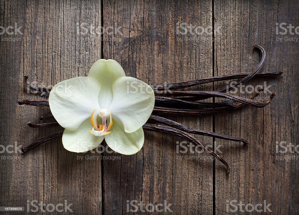 Vanilla sticks and flower on the wood background stock photo