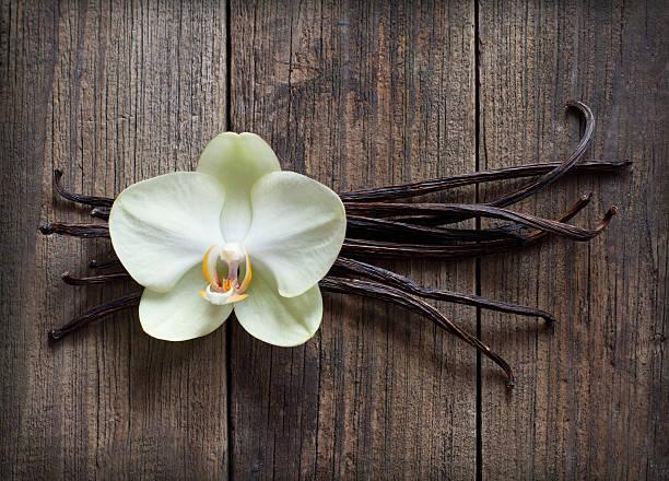 bâtons de vanille et de fleurs sur fond en bois - vanille photos et images de collection